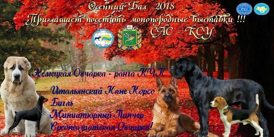 выставка собак 2 x CAC Харьков